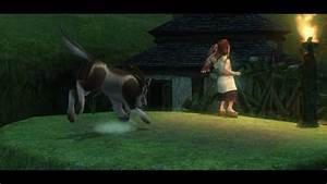 Twilight Princess Walkthrough The Twilight Zelda Dungeon