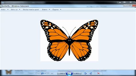 In svg files is called. How To Convert SVG To JPEG - YouTube