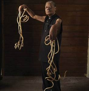 World's Longest Nails (longest nails, worlds nails) - ODDEE