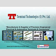 Automotive & Electrical Components By Terminal