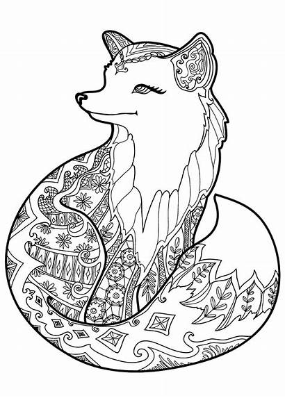 Fox Coloring Pages Foxes Patterns Adult Animal