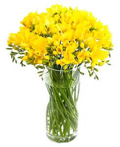 country wedding bouquets fortnightly flower delivery freesias yellow