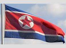 North Korea denounces use of national flag as 'grave