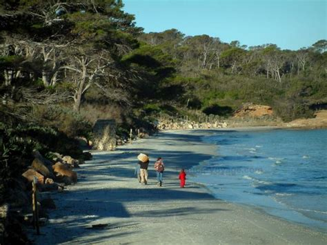 guide des chambres d hotes les îles d 39 hyères guide tourisme vacances