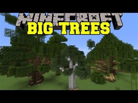 timelapse giant tree doovi