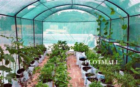 terrace farming  home  kerala terrace garden design