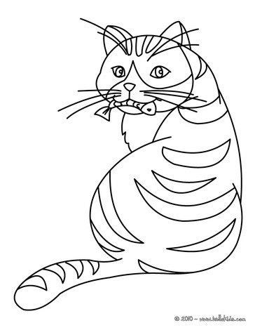 cat eating  fish coloring page nice cat drawing  kids