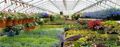 Garden Center by Garden Center Planting Supplies Forever Green Iowa City