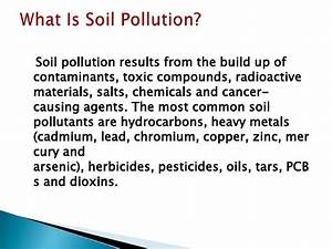 English Essay Papers Soil Pollution Essay In Malayalam Example Of Thesis Statement For Argumentative Essay also Protein Synthesis Essay Soil Pollution Essay Nursing Profession Or Calling Soil Pollution  Samples Of Persuasive Essays For High School Students