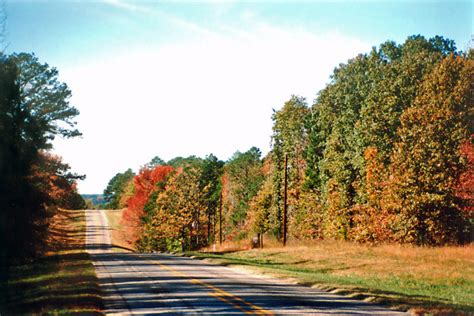 country roads  texas  beautiful fall foliage
