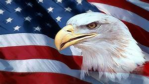 Patriotic Eagle Wallpapers (61+ images)