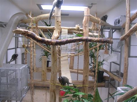 can light housing housing and husbandry of non human primates nc3rs