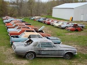 Own a Mustang Junk Yard!   Junkyard cars, Classic mustang, Barn find cars