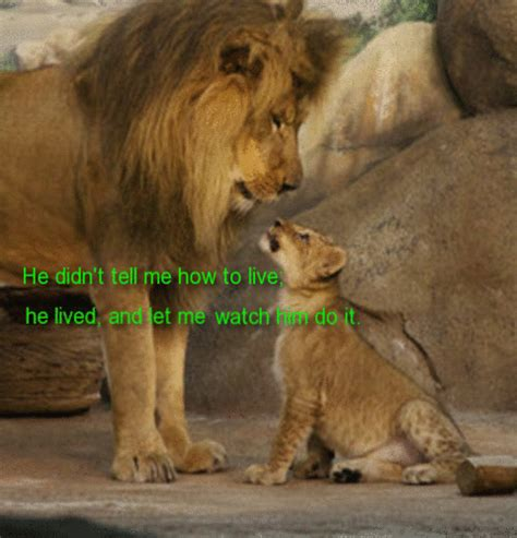 lion king dad   fathers son ecards greeting