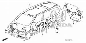 Wire Harness  1  For 2010 Honda Odyssey 5