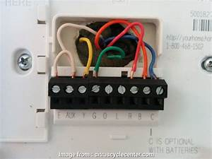 Wiring Diagram  Honeywell Thermostat Rth3100c1002 Creative