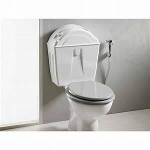 Wc Sortie Vertical : r servoir toilettes cologiques avec pack wc sortie verticale ~ Premium-room.com Idées de Décoration