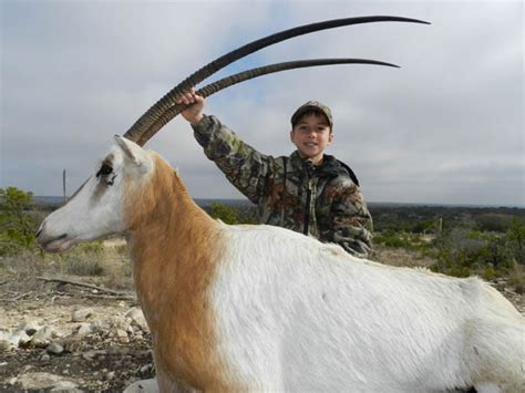 affordable exotic hunting packages rock canyon ranch
