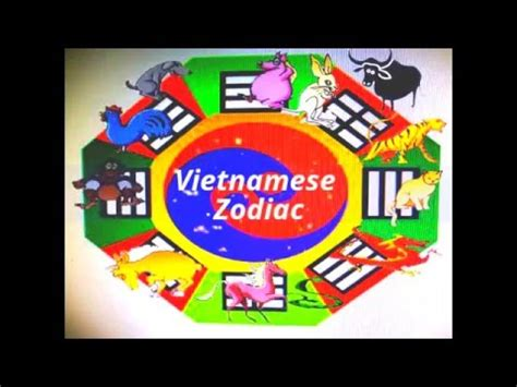 animal year chinese vietnamese zodiac youtube