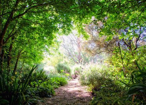 Garten Gestalten Trockener Boden by Garten Design Mit Hitzebest 228 Ndigen Pflanzen F 252 R Trockenen