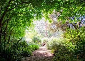 Bäume Für Trockenen Boden : garten design pflanzen trockenen boden ~ Lizthompson.info Haus und Dekorationen