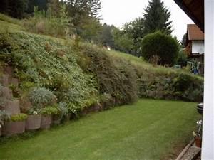 Garten Hanglage Begradigen : pflanztr ge mein sch ner garten forum ~ Markanthonyermac.com Haus und Dekorationen