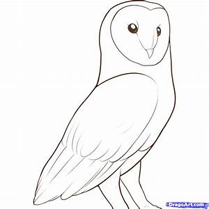 Barn Owl | Free Coloring Pages on Art Coloring Pages