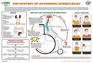 Autonomic Dysreflexia   U0026gt  U0026gt  U0026gt  See It  Believe It  Do It
