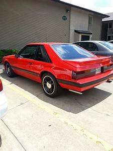 Whiteboy's Mustangs: 1986 Mustang GT 5.0 5spd Phoenix has risen