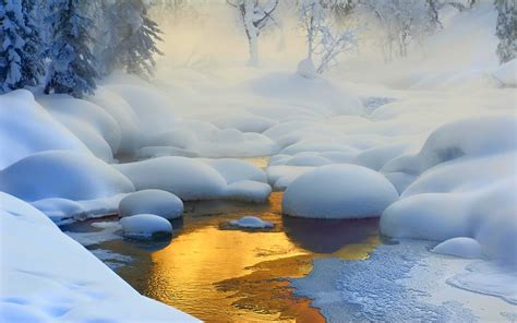 Nature, Landscape, Creeks, Sunrise, Forest, Snow, Frost