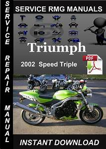 2002 Triumph Speed Triple Service Repair Manual Download