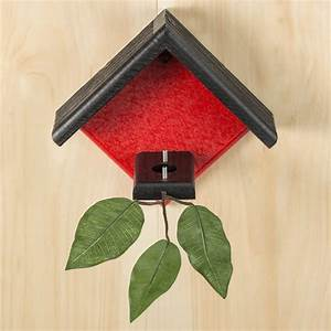 Duncraft com: Duncraft Little Red Hummingbird House