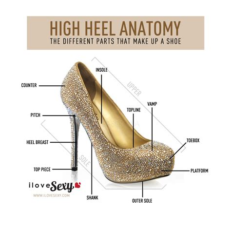 Diagram Of Heel Structure by High Heel Shoe Anatomy Anatomy High Heel And Footwear