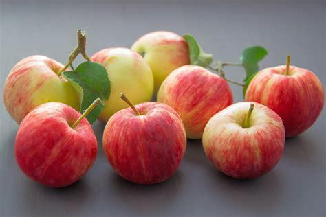 Free Images : apples, fruits, delicious, blur, focus ...