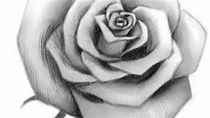 Realistic Rose Drawing Step By Step - DRAWING ART IDEAS