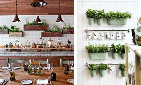 plante aromatique cuisine décoration cuisine plantes aromatiques