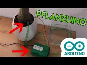 Pflanzen Automatisch Bewässern : pflanzuino pflanzen automatisch bew ssern watering plants automatically youtube ~ Frokenaadalensverden.com Haus und Dekorationen