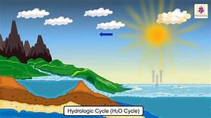 Diagram Of Water Cycle For Class 3