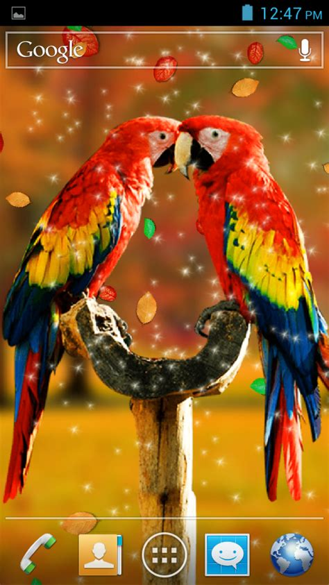 3d Birds Wallpapers by Birds 3d Live Wallpaper Android Apps On Play