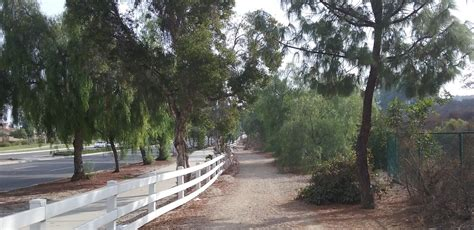 east coyote hills trail fullerton walks