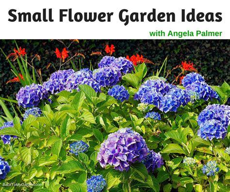 flowers for small garden small flower garden webzine co
