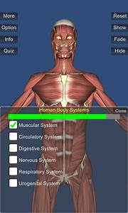 3d Anatomy Leverages The Unity Game Engine To Impressive