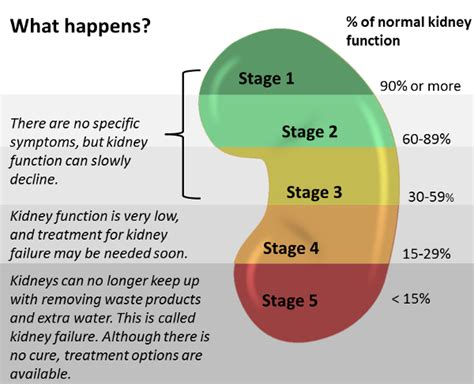 Stages Kidney Failure Symptoms