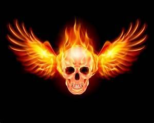 骷髅与火焰翅膀模板下载(图片编号:20140509123531)-其他-生活百科-矢量素材 - 聚图网 juimg.com