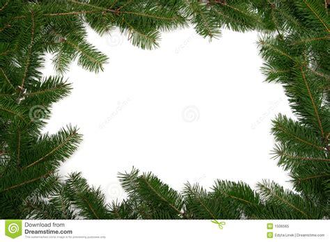 christmas tree frame stock image image of christmas
