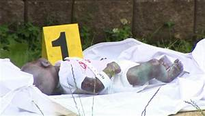 doll mistaken for dead baby in ny park