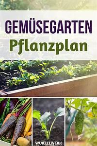 Gemüse Anbauen Plan : hier kommt ein konkreter gem segarten pflanzplan den du 1 ~ Watch28wear.com Haus und Dekorationen