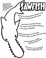 Sawfish Coloring Pages Crayola sketch template