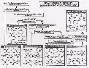 Naming Organic Compounds Chart