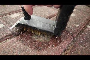 flechten auf dachpfannen entfernen flechten auf steinen entfernen so gelingt s